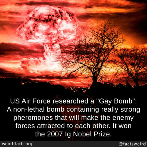 """Facts, Memes, and Nobel Prize: US Air Force researched a """"Gay Bomb"""":  A non-lethal bomb containing really strong  pheromones that will make the enemy  forces attracted to each other. It won  the 2007 lg Nobel Prize.  weird-facts.org  @factsweird"""