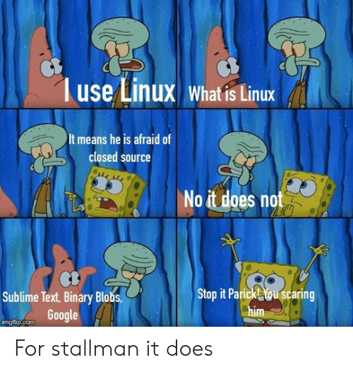 Google, Sublime, and Text: use Linux What is Linux  It means he is afraid of  closed source  No it does not  Sublime Text, Binary Blobs  Google  Stop it Parick ou scaring  im  imgflip.com For stallman it does