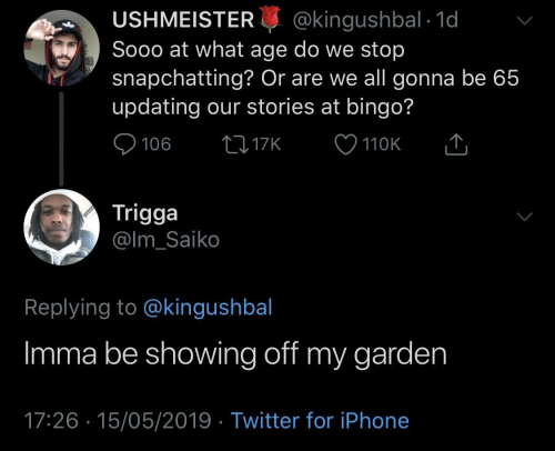 bingo: USHMEISTER@kingushbal 1d  Sooo at what age do we stop  snapchatting? Or are we all gonna be 65  updating our stories at bingo?  110K  Trigga  @lm_Saiko  Replying to @kingushbal  Imma be showing off my garden  17:26 15/05/2019 Twitter for iPhone