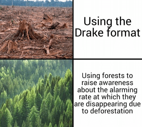 deforestation: Using the  Drake format  Using forests to  raise awareness  about the alarming  rate at which they  are disappearing due  to deforestation