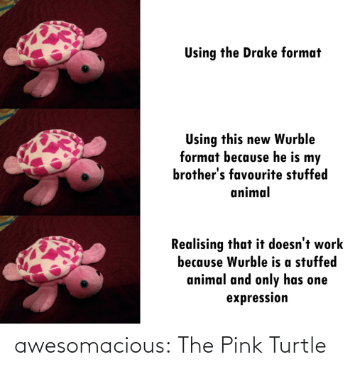 Drake, Tumblr, and Work: Using the Drake format  Using this new Wurble  format because he is my  brother's favourite stuffed  animal  Realising that it doesn't work  because Wurble is a stuffed  animal and only has one  expression awesomacious:  The Pink Turtle