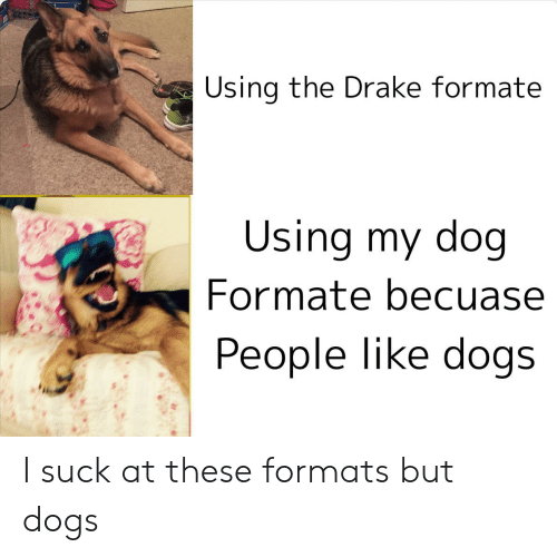 Dogs, Drake, and Reddit: Using the Drake formate  Using my dog  Formate becuase  People like dogs I suck at these formats but dogs