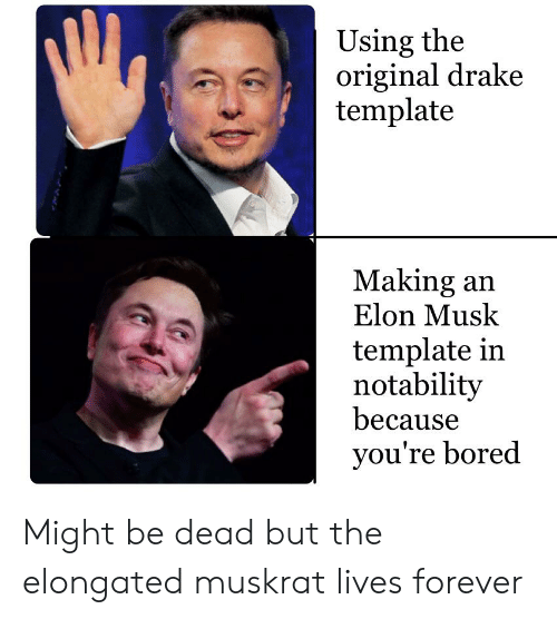 Bored, Drake, and Forever: Using the  original drake  template  Making an  Elon Musk  template in  notability  because  you're bored Might be dead but the elongated muskrat lives forever