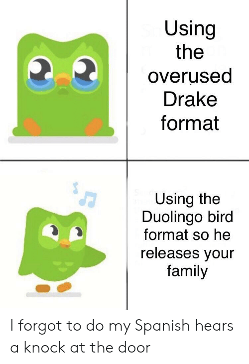 At the door: Using  the  overused  Drake  format  Using the  Duolingo bird  format so he  releases vour  family I forgot to do my Spanish hears a knock at the door