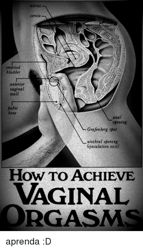 How To Achieve Vaginal Orgasms