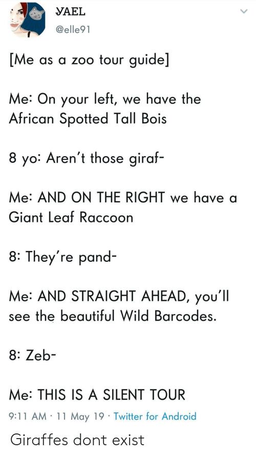 9/11, Android, and Beautiful: VAEL  @elle91  Me as a zoo tour guide]  Me: On your left, we have the  African Spotted Tall Bois  8 yo: Aren't those giraf-  Me: AND ON THE RIGHT we have a  Giant Leaf Raccoon  8: They're pand-  Me: AND STRAIGHT AHEAD, you'll  see the beautiful Wild Barcodes  8: Zeb-  Me: THIS IS A SILENT TOUR  9:11 AM 11 May 19 Twitter for Android Giraffes dont exist