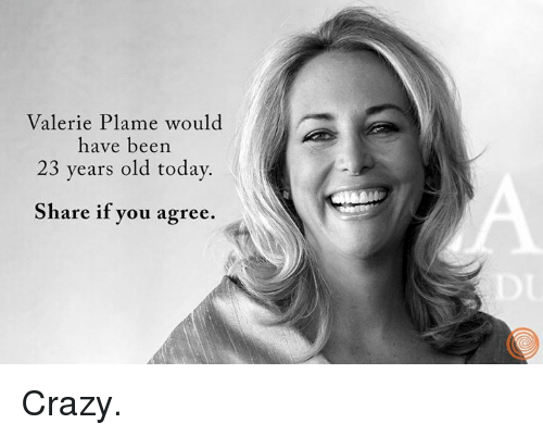 valerie plame essay Remember valerie plame in a devastating essay in the new york times, he debunked the run up to the war and infuriated vice president dick cheney, among others.