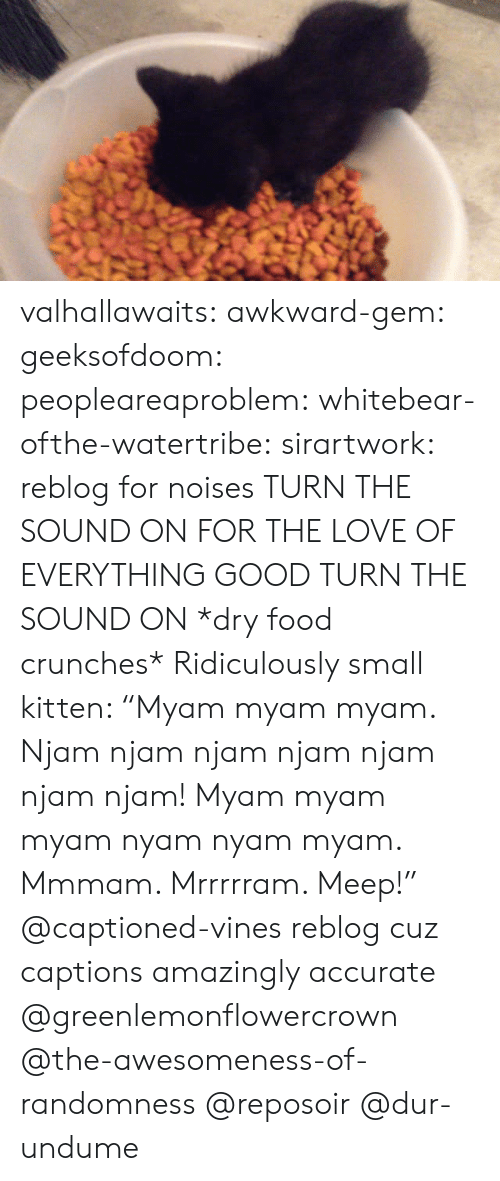 "Dry Food: valhallawaits:  awkward-gem:  geeksofdoom:  peopleareaproblem:  whitebear-ofthe-watertribe:  sirartwork:  reblog for noises  TURN THE SOUND ON FOR THE LOVE OF EVERYTHING GOOD TURN THE SOUND ON  *dry food crunches* Ridiculously small kitten: ""Myam myam myam. Njam njam njam njam njam njam njam! Myam myam myam nyam nyam myam. Mmmam. Mrrrrram. Meep!"" @captioned-vines  reblog cuz captions amazingly accurate  @greenlemonflowercrown @the-awesomeness-of-randomness   @reposoir @dur-undume"