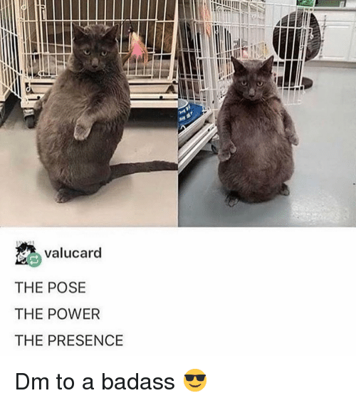 Memes, Power, and Badass: valucard  THE POSE  THE POWER  THE PRESENCE Dm to a badass 😎