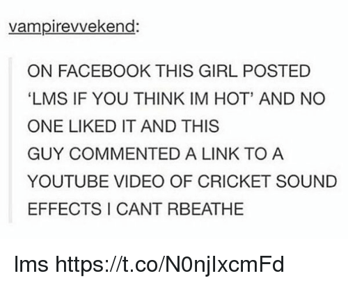 lms: vampirevvekend:  ON FACEBOOK THIS GIRL POSTED  LMS IF YOU THINK IM HOT' AND NO  ONE LIKED IT AND THIS  GUY COMMENTED A LINK TO A  YOUTUBE VIDEO OF CRICKET SOUND  EFFECTS I CANT RBEATHE lms https://t.co/N0njIxcmFd