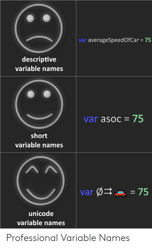 Unicode, Names, and Professional: var averageSpeedOfCar 75  descriptive  variable names  var asoc 75  short  variable names  var75  unicode  variable names Professional Variable Names