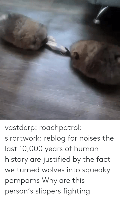 Justified: vastderp: roachpatrol:  sirartwork: reblog for noises the last 10,000 years of human history are justified by the fact we turned wolves into squeaky pompoms   Why are this person's slippers fighting