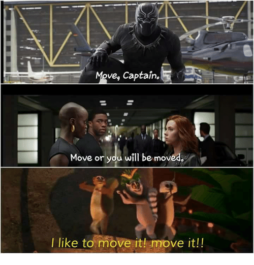 i like to move it move it