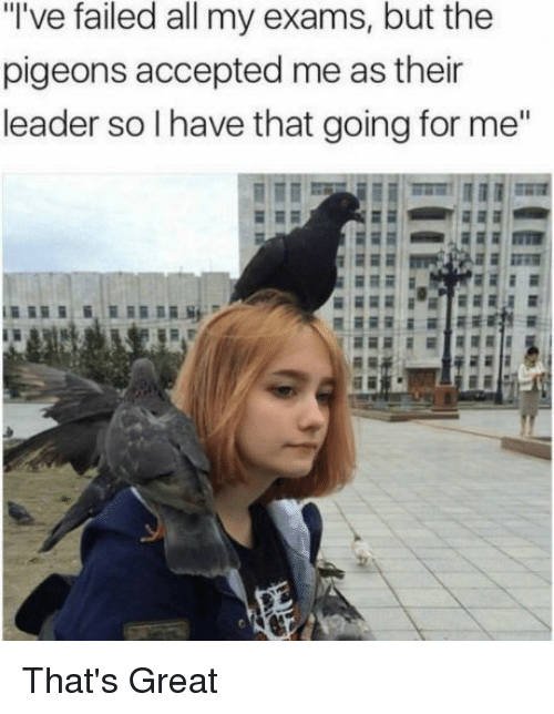 "Accepted, All, and For: ""'ve failed all my exams, but the  pigeons accepted me as their  leader so I have that going for me"" That's Great"