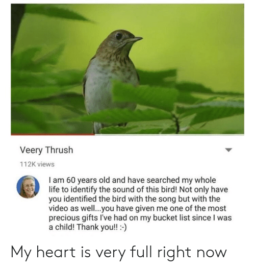 my-whole-life: Veery Thrush  112K views  I am 60 years old and have searched my whole  life to identify the sound of this bird! Not only have  you identified the bird with the song but with the  video as well..you have given me one of the most  precious gifts I've had on my bucket list since I was  a child! Thank you!!- My heart is very full right now