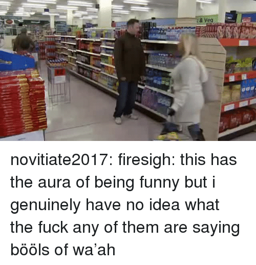 Veg: & Veg novitiate2017: firesigh:  this has the aura of being funny but i genuinely have no idea what the fuck any of them are saying  bööls of wa'ah