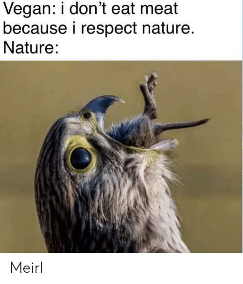 Eat Meat: Vegan: i don't eat meat  because i respect nature.  Nature: Meirl