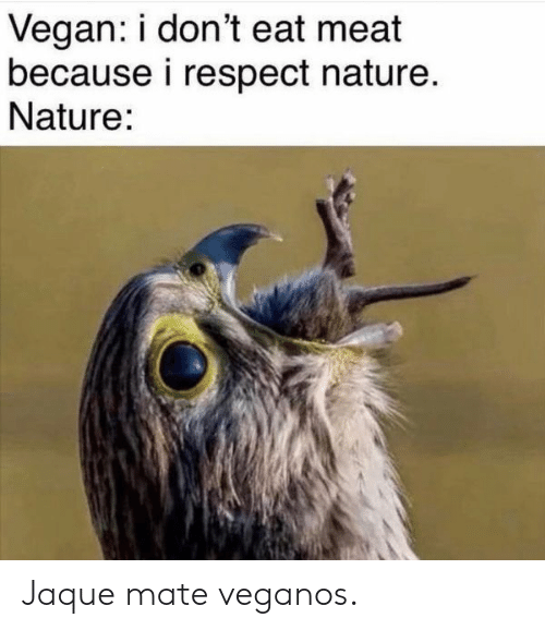 Eat Meat: Vegan: i don't eat meat  because i respect nature.  Nature: Jaque mate veganos.