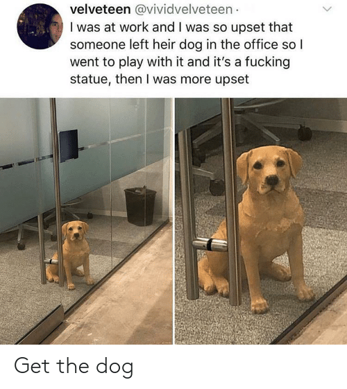 Fucking, The Office, and Work: velveteen @vividvelveteen  I was at work and I was so upset that  someone left heir dog in the office so  went to play with it and it's a fucking  statue, then I was more upset Get the dog