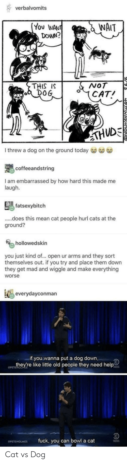 Cats, Fuck You, and Old People: verbalvomits  (You WANT  DOWN?  NAIT  NOT  (CAT!  THIS IS  DOG  THUDE  I threw a dog on the ground today  coffeeandstring  I am embarrassed by how hard this made  laugh.  me  fatsexybitch  ..does this mean cat people hurl cats at the  ground?  hollowedskin  you just kind of... open ur arms and they sort  themselves out. if you try and place them down  they get mad and wiggle and make everything  worse  everydayconman  if you wanna put a dog down,  they're like little old people they need help  OPETEMOLAES  fuck, you can bowl a cat  OPETEHOLMES  WNAHHILLA Cat vs Dog
