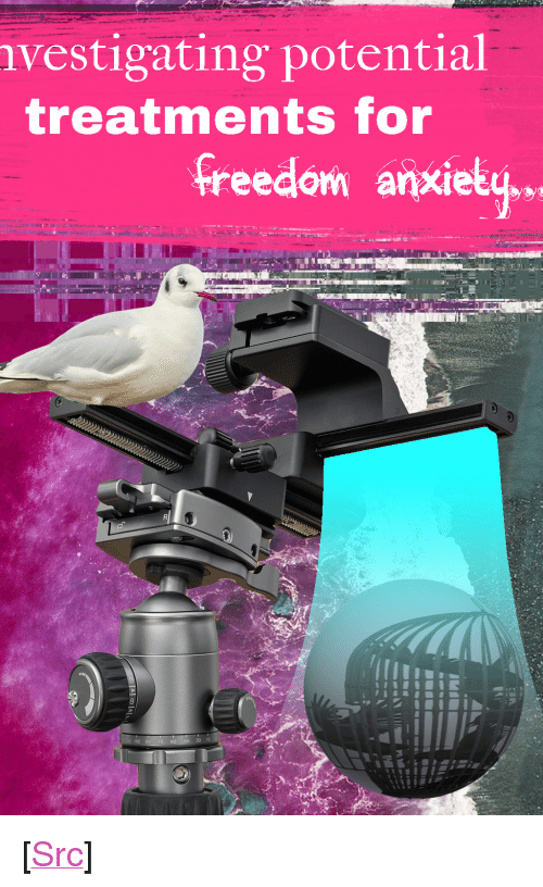 """claudia: vestigating potential  treatments for  freedom anxiety,.  105  30 15 <p>[<a href=""""https://www.reddit.com/r/surrealmemes/comments/82xp3f/claudia_once_told_me/"""">Src</a>]</p>"""