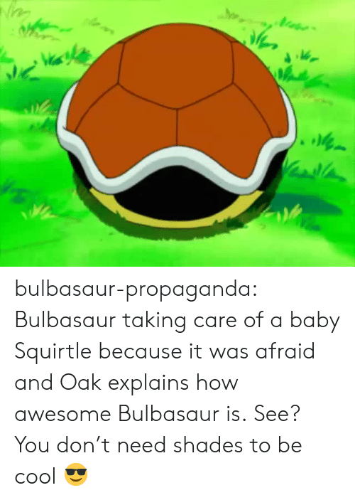 Bulbasaur, Tumblr, and Blog: Vi bulbasaur-propaganda:   Bulbasaur taking care of a baby Squirtle because it was afraid and Oak explains how awesome Bulbasaur is.   See? You don't need shades to be cool 😎