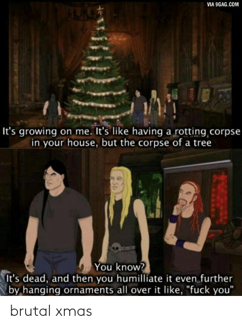 "9gag: VIA 9GAG.COM  It's growing on me. It's like having a rotting corpse  in your house, but the corpse of a tree  You know?  It's dead, and then you humilliate it even further  by hanging ornaments all over it like, ""fuck you"" brutal xmas"