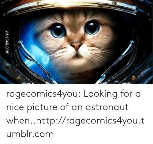 Nice Picture: VIA 9GAG.COM ragecomics4you:  Looking for a nice picture of an astronaut when..http://ragecomics4you.tumblr.com