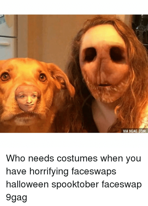 9gag, Halloween, and Memes: VIA 9GAG.COM Who needs costumes when you have horrifying faceswaps halloween spooktober faceswap 9gag