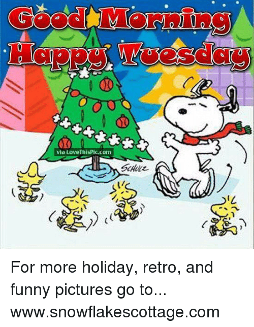 Funnies Pictures: via Love ThisPic.com For more holiday, retro, and funny pictures go to... www.snowflakescottage.com