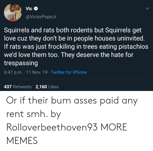 SMH: Vic  @VictorPopeJr  Squirrels and rats both rodents but Squirrels get  love cuz they don't be in people houses uninvited.  If rats was just frockiling in trees eating pistachios  we'd love them too. They deserve the hate for  trespassing  6:47 p.m. 11 Nov. 19 Twitter for iPhone  437 Retweets 2,160 Likes Or if their bum asses paid any rent smh. by Rolloverbeethoven93 MORE MEMES