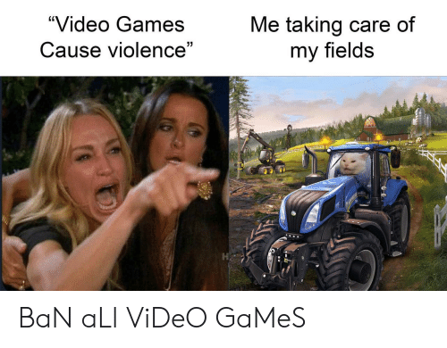 "Fields: ""Video Games  Me taking care of  my fields  Cause violence"" BaN aLl ViDeO GaMeS"