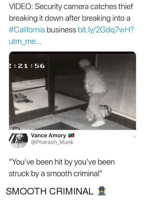 "pharaoh: VIDEO: Security camera catches thief  breaking it down after breaking into a  #California business bit.ly/2Gdq7WH?  utm_me  :21:56  Vance Amory  Pharaoh_Munk  ""You've been hit by you've been  struck by a smooth criminal"" SMOOTH CRIMINAL 🕵️‍♂️"