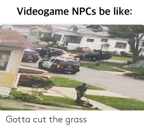 Be Like, Grass, and Videogame: Videogame NPCS be like  STOP Gotta cut the grass