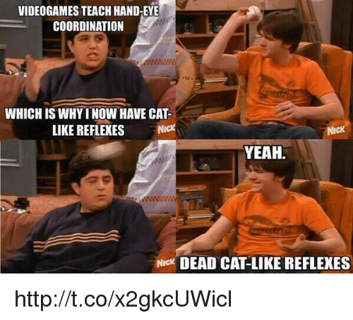 Memes, 🤖, and Coordination: VIDEOGAMES TEACH HAND-EYE  COORDINATION  WHICH IS WHY INOW HAVE CAT  LIKE REFLEXES  YEAH  Nick DEAD CATLIKE REFLEXES http://t.co/x2gkcUWicl
