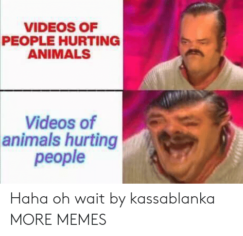 Videos Of: VIDEOS OF  PEOPLE HURTING  ANIMALS  Videos of  animals hurting  people Haha oh wait by kassablanka MORE MEMES