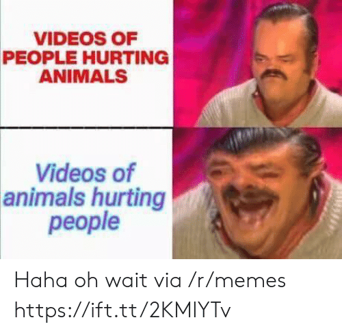 Oh Wait: VIDEOS OF  PEOPLE HURTING  ANIMALS  Videos of  animals hurting  people Haha oh wait via /r/memes https://ift.tt/2KMIYTv