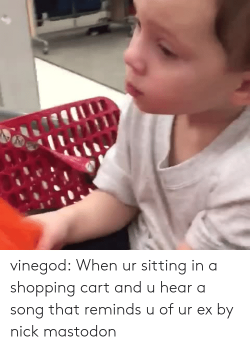 Nick Mastodon: vinegod:  When ur sitting in a shopping cart and u hear a song that reminds u of ur ex by nick mastodon