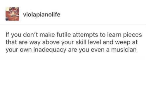 Own, Make, and You: violapianolife  If you don't make futile attempts to learn pieces  that are way above your skill level and weep at  your own inadequacy are you even a musician