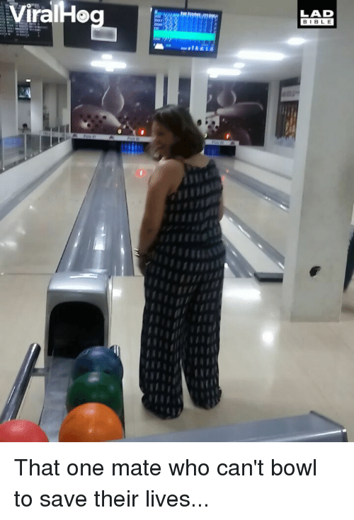 Memes, Bible, and Bowl: ViralHo  LAD  BIBLE That one mate who can't bowl to save their lives...