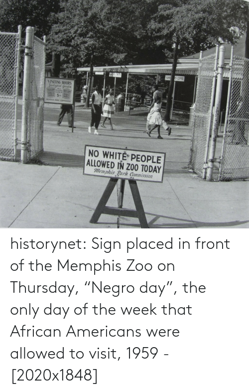 """African Americans: VISITING HOURS  Zoolayical Guuden  PARK COMMOSCON  NO WHITE PEOPLE  ALLOWED IN ZO0 TODAY  Memphis Park Commission historynet:  Sign placed in front of the Memphis Zoo on Thursday, """"Negro day"""", the only day of the week that African Americans were allowed to visit, 1959 - [2020x1848]"""