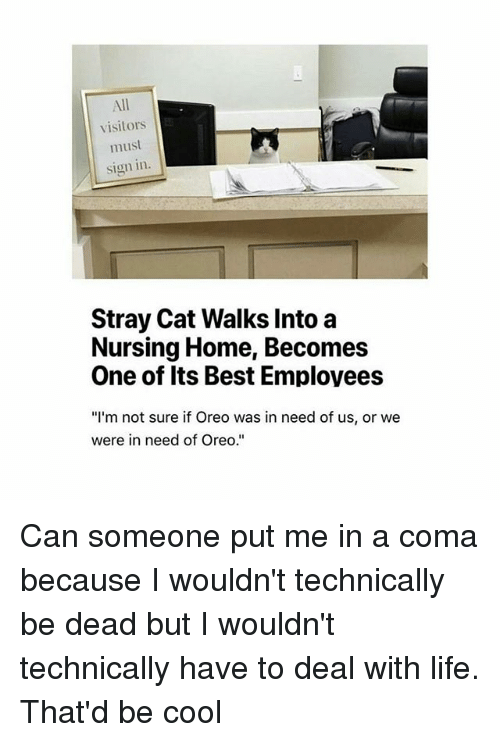 stray cats: visitors  must  sign in  Stray Cat Walks Into a  Nursing Home, Becomes  One of Its Best Employees  I'm not sure if Oreo was in need of us, or we  were in need of Oreo. Can someone put me in a coma because I wouldn't technically be dead but I wouldn't technically have to deal with life. That'd be cool