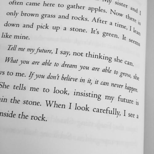The Rock: vly sister  often came here to gather apple  only brown grass and rocks. After a ti  down and pick up a stone. It's green. I  Now theres  time, I lea  It seems  like mine.  Tell me my future, I say, not thinking she can  What you are able to dream you are able to  s to me. If you  She tells me to look, insisting my future is  in the stone. When I look carefully, I see  nside the rock.  don't believe in it, it can never happen  , 1 see a
