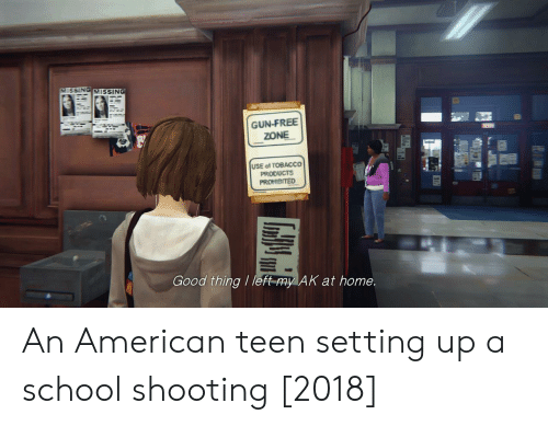 School, American, and Free: VMISSING MISSING  GUN-FREE  ZONE  USE of TOBACCO  PRODUCTS  Good thing / left-my AK at home. An American teen setting up a school shooting [2018]