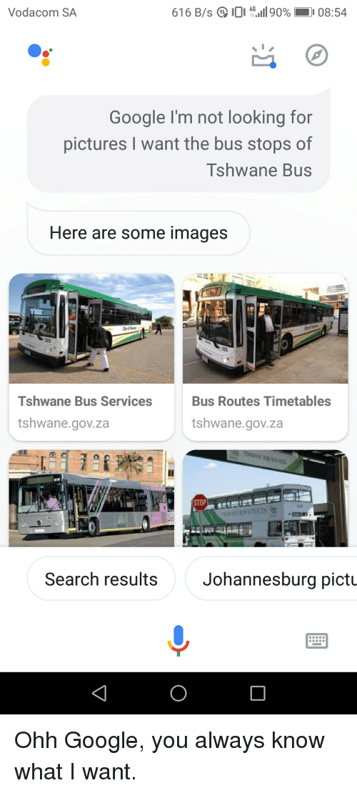 Google, Images, and Pictures: Vodacom SA  61 6 B/s Q 0-1190%  08:54  Google I'm not looking for  pictures I want the bus stops of  Tshwane Bus  Here are some images  Tshwane Bus Services  Bus Routes Timetables  tshwane.gov.za  tshwane.gov.za  Search results  Johannesburg pictu