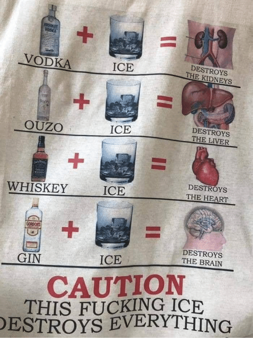 Kidneys: VODKA  DESTROYS  THE KIDNEYS  ICE  DESTROYS  OUZO  ICE  1  ICE  DESTROYS  THE HEART  WHISKEY  DESTROYS  THE BRAIN  GIN  ICE  CAUTION  THIS FUCKING ICE  ESTROYS EVERYTHING
