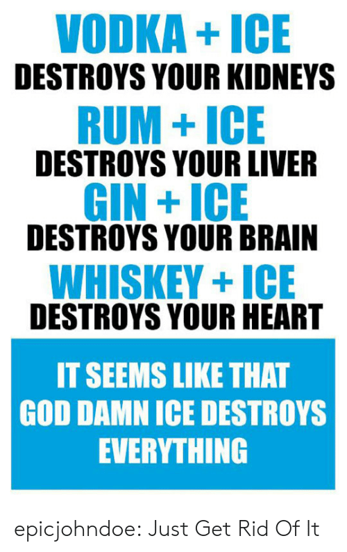 Kidneys: VODKA+ICE  DESTROYS YOUR KIDNEYS  RUM+ICE  DESTROYS YOUR LIVER  GIN +ICE  DESTROYS YOUR BRAIN  WHISKEY+ICE  DESTROYS YOUR HEART  IT SEEMS LIKE THAT  GOD DAMN ICE DESTROYS  EVERYTHING epicjohndoe:  Just Get Rid Of It