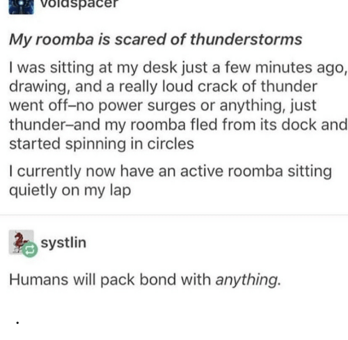 Anything Just: Voldspacer  My roomba is scared of thunderstorms  I was sitting at my desk just a few minutes ago,  drawing, and a really loud crack of thunder  went off-no power surges or anything, just  thunder-and my roomba fled from its dock and  started spinning in circles  I currently now have an active roomba sitting  quietly on my lap  systlin  Humans will pack bond with anything. .