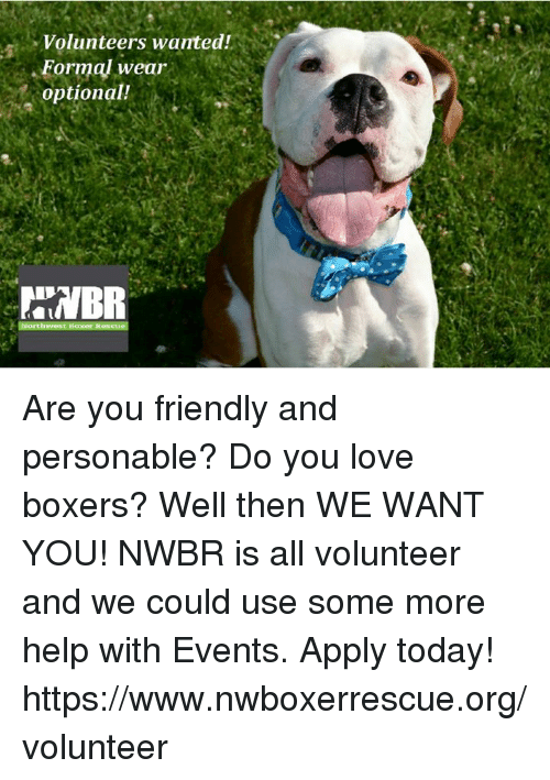 Love, Memes, and Some More: Volunteers wanted!  Formal wear  optional! Are you friendly and personable? Do you love boxers? Well then WE WANT YOU! NWBR is all volunteer and we could use some more help with Events. Apply today! https://www.nwboxerrescue.org/volunteer