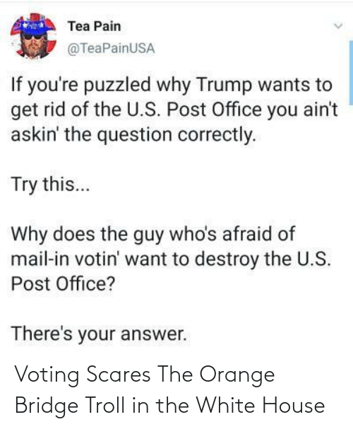 bridge: Voting Scares The Orange Bridge Troll in the White House